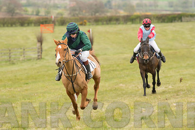 Pony Race at Balcormo point-to-point on 29Apr2017.