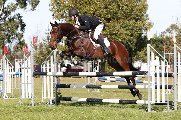 Showjumping & Prizegiving photos