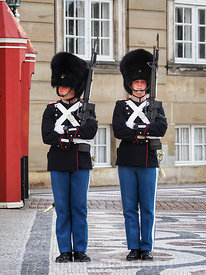 The Royal Life Guards