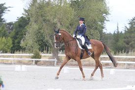 SI_Festival_of_Dressage_310115_Level_8_MFS_1147