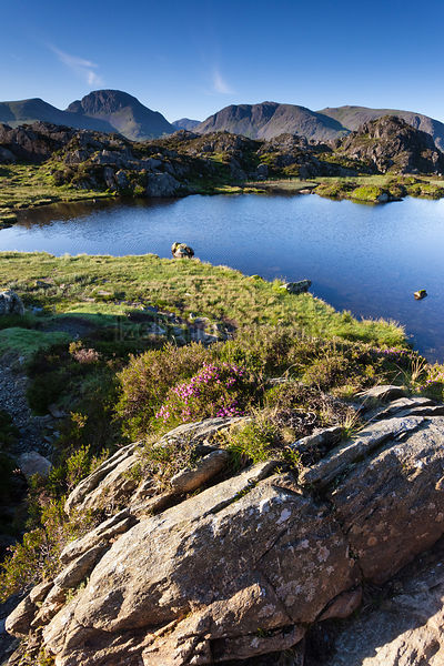 Sun rising over Innominate Tarn with Kirk Fell & Great Gable in the distance. Lake district, England, UK.