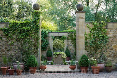Entrance to a small formal 'antechamber' to walled garden, built 1999, designed by late Graham Hopewell, planted with a combination of cool evergreens including low hedges of Hedera 'Ivalace', clipped box, and a clipped standard holly. Mill House, Netherbury, Dorset, UK