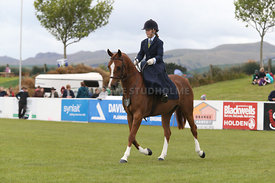Canty_A_P_131114_Side_Saddle_1236