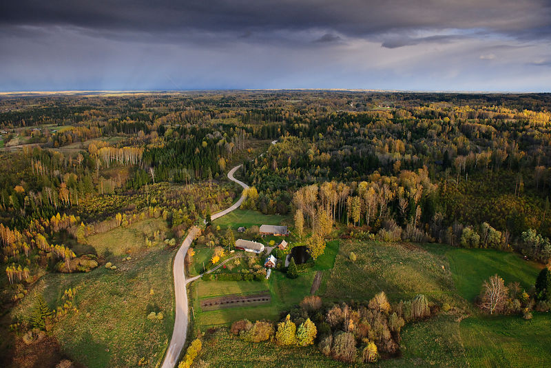 Road leading into the lowland forests of southern Estonia. Europe, October 2010.
