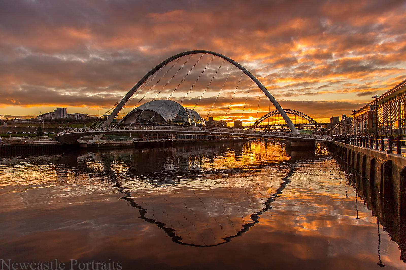 Golden Tyne