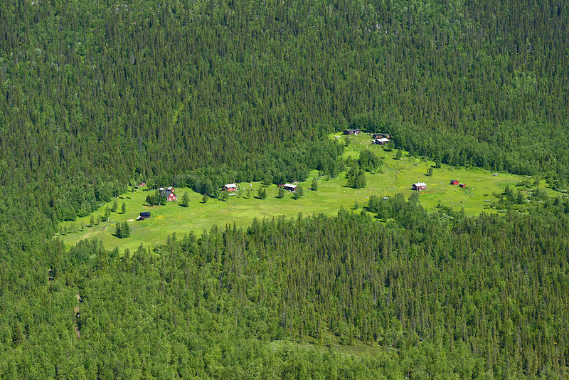 Aerial view of houses in forest clearing, Sarek National Park, Greater Laponia Rewilding Area, Lapland, Norrbotten, Sweden, June 2013.