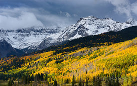 Storm over Aspens | San Juan Mountains, CO