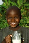 Young boy smiling at camera holding glass of milk Uganda Africa