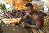 Carpenter selling fantasy or figurative coffins popular with the Ga people, Accra, Ghana