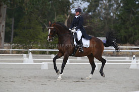 SI_Festival_of_Dressage_300115_Level_9_SICF_0488