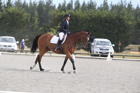 Canty_Dressage_Champs_071214_065