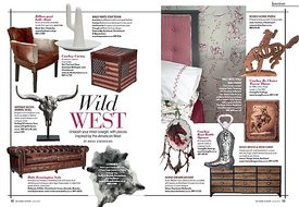 H_P_June_2017_interiors_wild_west