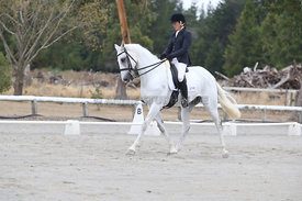 SI_Festival_of_Dressage_310115_Level_5_Champ_0816