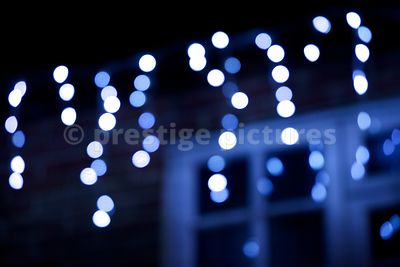 Blue and White Hanging Fairy Lights
