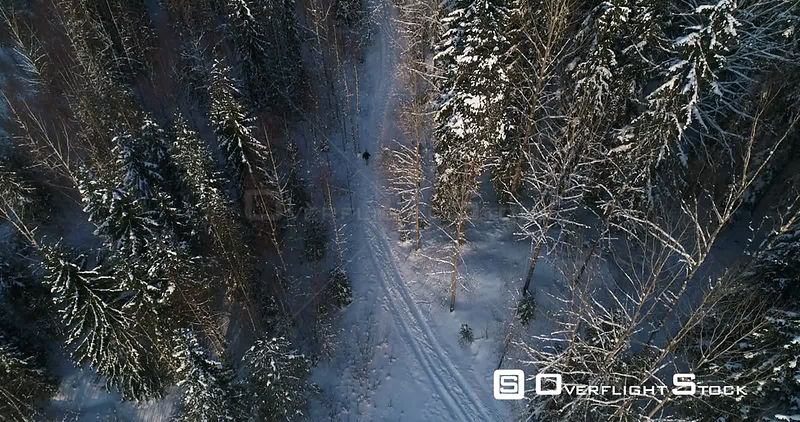 Man Walking a Snowy Forest, 4k Aerial View Following a Young Male, Hiking Between Frozen Trees, Freezing Cold Winter Day, Sipoonkorpi National Park, Uusimaa, Finland