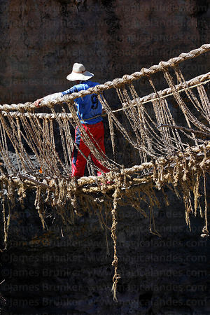 Man crosses old bridge with rope that will be used to pull the new foundation ropes across the canyon , Q'eswachaka , Canas province , Peru