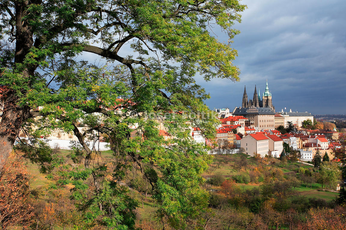 Prague Castle and Hradcany from Strahov Garden, Prague, Czech Republic