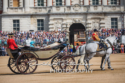 Trooping_the_Colour_8736