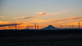 Wind turbines near sunset