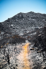 Orange pathway through the barren burned black and white landscape below Cave Peak