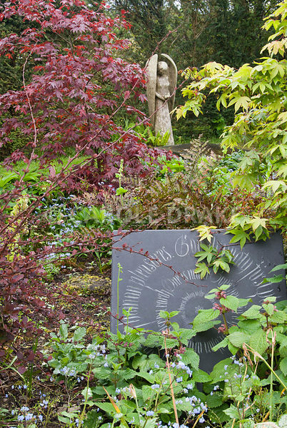 'God Almighty first planted a garden: and indeed it is the purest of human pleasures. It is the greatest refreshment of the spirits of man', the first lines of Francis Bacon's essay On Gardens cut into a slate panel, by calligrapher Jackie Allan, surrounded by acers, brunnera and Lamium orvala with John Aulman's yew wood angel beyond. Caervallack Farm, St Martin, Helston, Cornwall, UK