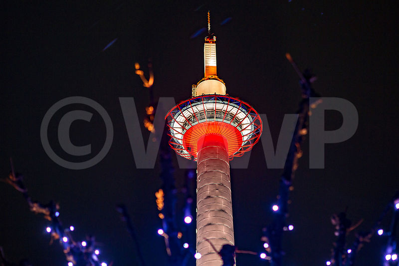 _W_P9100-Kyoto-Tokyo-tower-by-night