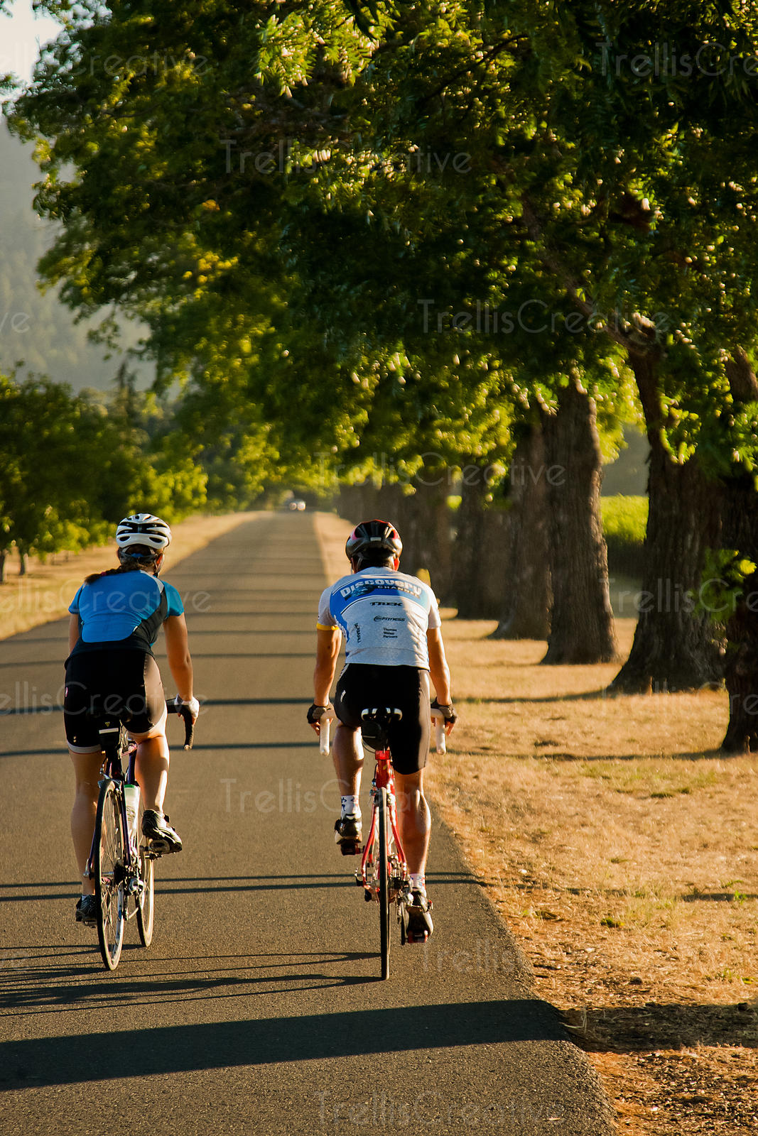 A young attractive couple enjoy a relaxing bike ride the vineyards in Napa Valley