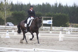 SI_Festival_of_Dressage_300115_Level_7_0287