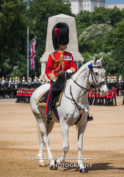Trooping_the_Colour_8756