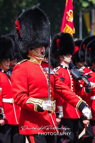 Trooping_the_Colour_8806