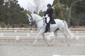 SI_Festival_of_Dressage_300115_Level_6_NCF_0178