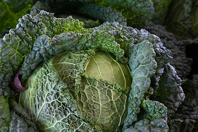 Locally grown lettuce for sale at a wholesale market in Amish country, Lancaster, Pennsylvania
