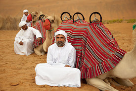 Canel holders taking a rest beside camels at Empty Quarter.