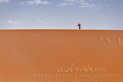 Gemsbok on the red sand dunes at Sossusvlei