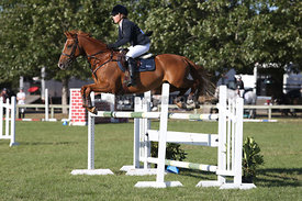 NZ_Nat_SJ_Champs_080215_1m10_pony_0063
