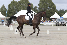 SI_Festival_of_Dressage_310115_Level_4_Champ_0597