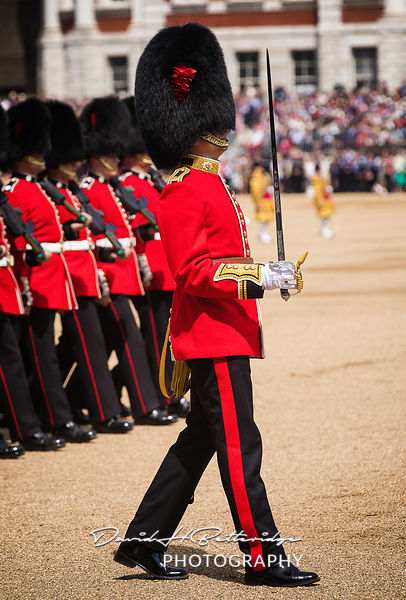 Trooping_the_Colour_8774