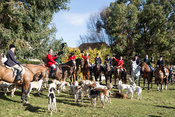 Royal Artillery Hunt 2014-2015 photos