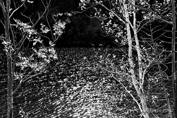SUNLIGHT WATER REFLECTIONS CHAPEL POND ADIRONDACK MOUNTAINS BLACK AND WHITE