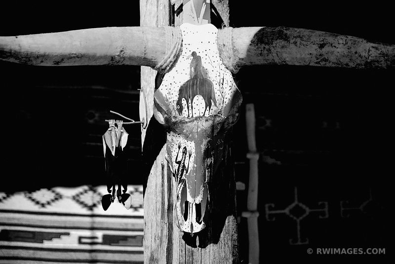 PAINTED BULL SKULL SANTA FE NEW MEXICO BLACK AND WHITE