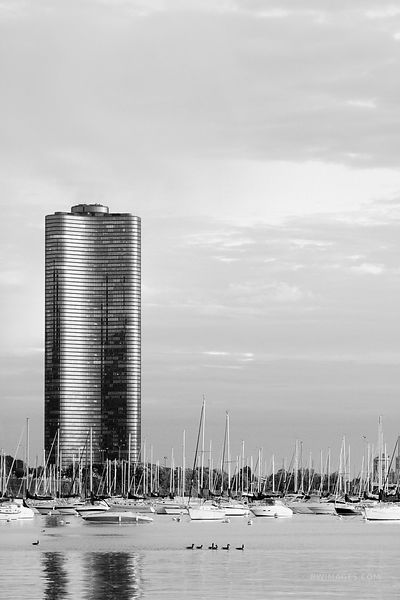 LAKE POINTE TOWER CHICAGO BLACK AND WHITE VERTICAL