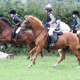 30th August 2013 OBH PC Mock Hunt photos