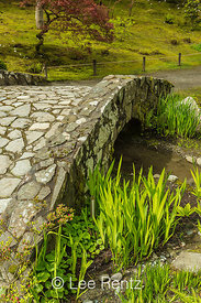 Stone Bridge in Seattle's Japanese Garden