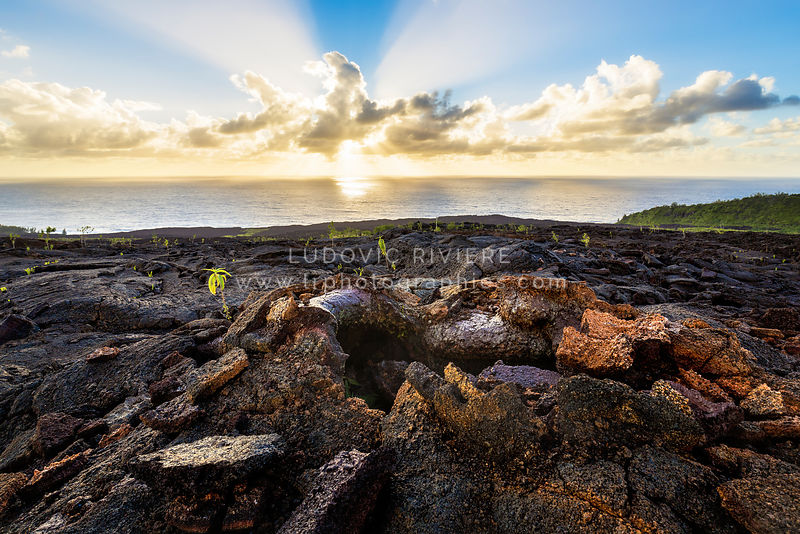 Sunrise on the vestiges of the lava flow of 2007, Reunion Island
