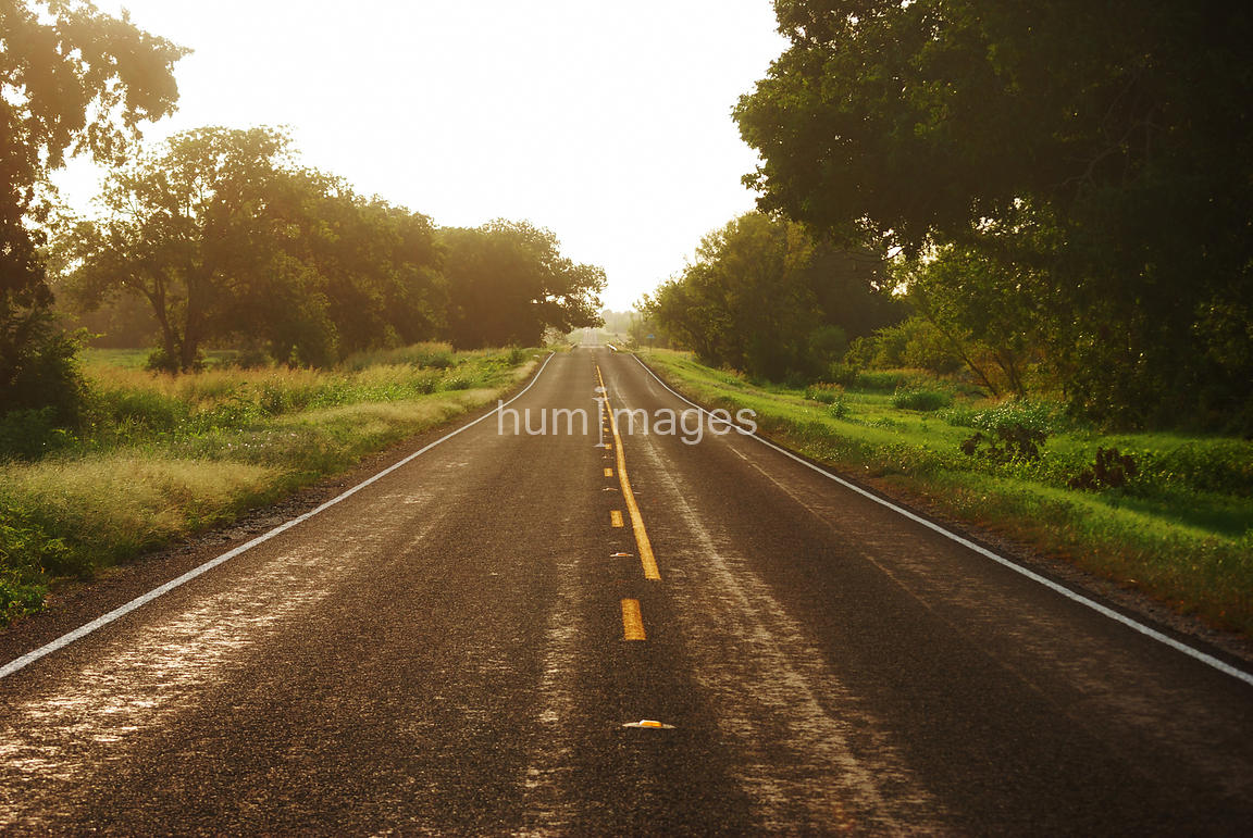 Beautiful image of lonely country road at sunset (Texas)