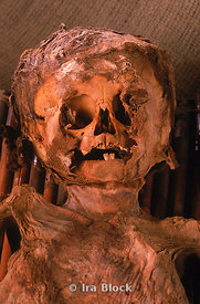Face of a child mummy