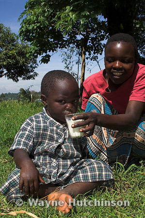 African girl giving baby a drink of milk from a glass Kenya Africa