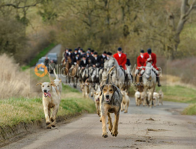 The Cottesmore Hunt at Ladywood Lodge 4/3 photos