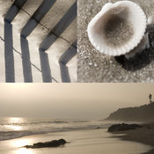 Coastal Art Collage | Sea Shell | Beach Fence | Ocean Landscape