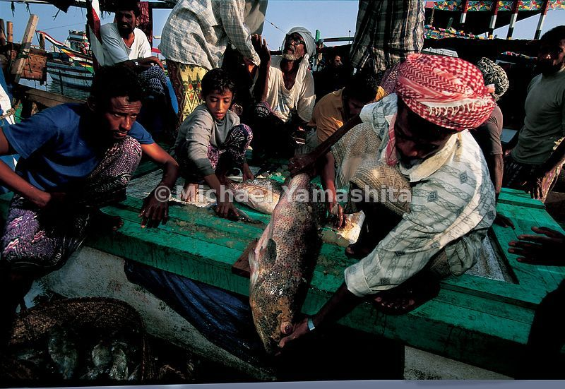 Al Hodeida is main fishing port of Yemen,  and its fish market is the largest on the Red Sea.
